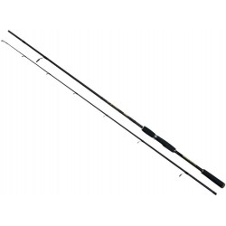 Lanseta 2 Tronsoane Safina X 2.10M/10-30G