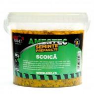 Amestec Seminte Scoica 5 kg Senzor Planet