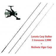 Set Lanseta Carp Stalker 3 tronsoane 3,90M + Mulineta Vigor Carp